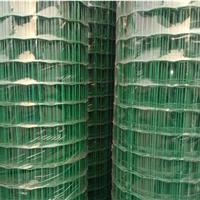 种植业防护网-绿色围栏网-环保铁丝网