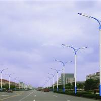 山东隆昌灯饰路灯厂家供应LED路灯