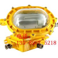 供应海洋王BFC8120/内场强光/防爆泛光灯