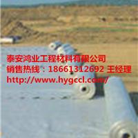 山东土工膜厂家泰安鸿业 HDPE土工膜