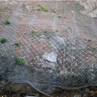 边坡防护网|钢丝绳网|拦石头钢丝格栅