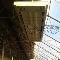 高温汗蒸房电加热器 电采暖设备 高温辐射器