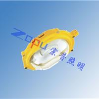 供应SW8101防爆平台灯