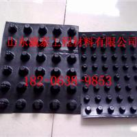 江苏宿迁塑料排水板生产厂家