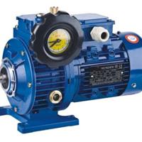 供应卧式无级调速电机UDL01-B3