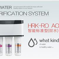 供应智能标准型(双水)HRK-RO AO-18