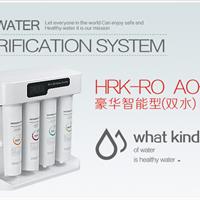 供应豪华智能型双出水净水器HRK-RO AO-33