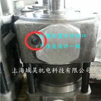 QT62-125-BP-Z齿轮泵