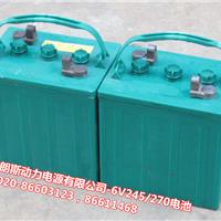 长青蓄电池6V245/3-EV-190