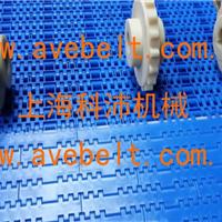 供应1005塑料网带厂家