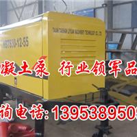 河北国产|进口搅拌拖泵的价格-涉县建议零售