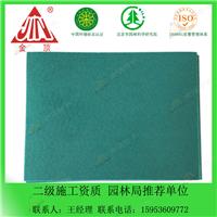 厂家直供 抗紫外线高分子pvc防水卷材