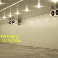 合肥食用菌冷链冷库安装建造