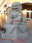 供应惠安石雕厂传统石狮子雕刻 欧式石狮子