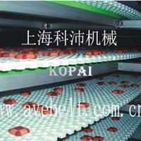 供应螺旋输送机塑料网带