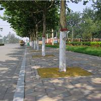 供应美化环境用什么?道路树池盖板厂家生产