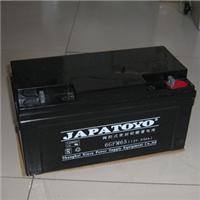 东洋蓄电池12V150AH参数
