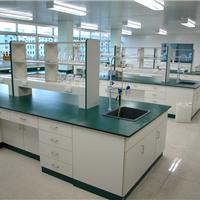 河北实验室家具 实验台 全木中央台