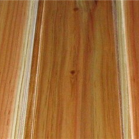 供应无油漆杉木墙板、墙壁板、护墙板桑拿板