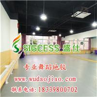 舞蹈室塑胶地板 北京舞蹈地板 儿童舞蹈地板