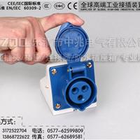 输出数字硅箱明装工业插座ZZ113 16A 蓝色