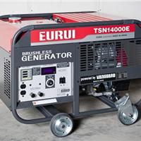 日本东洋单相10.5KW发电机TSN14000E