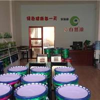广东厂家一级代理品牌油漆涂料 建筑涂料