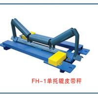 供应赛摩FH-1单托辊电子皮带秤