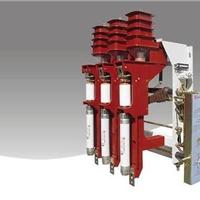 供应TEC-VSARC2-12kv真空负荷开关批发