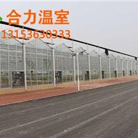 山东日光温室建设厂家