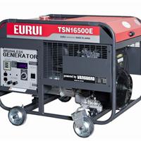 日本东洋单相12.8KW发电机TSN16500E