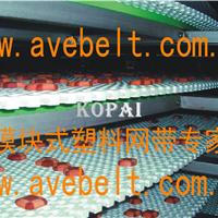 供应耐高温塑料网带厂家
