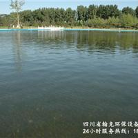 四川泳池景观水处理设备价格价格