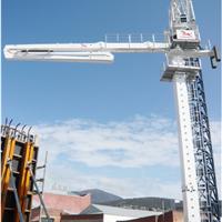 信瑞重工32M布料半径3节臂楼面内爬液压自动