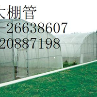 DN40镀锌钢管《北京》批发商价