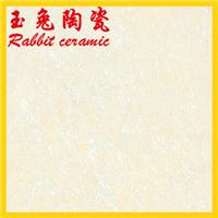 供应佛山瓷砖600*600耐磨地面砖 聚晶抛光砖
