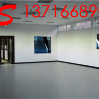 供应舞蹈地板 舞蹈地胶 舞蹈地胶价格