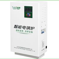 供应派帝电锅炉10kW(L系列)