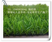 供应人造草坪地毯