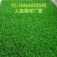石家庄门球场人工草坪15mm加密