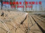 郑州市光宏温室工程有限公司