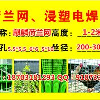 供应黑龙江荷兰网围栏@东北隔离防护铁丝网