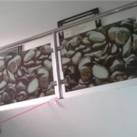 供应 dip-tech 数码陶瓷印刷栏杆玻璃