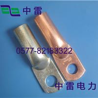 供应管制DTG铜接线端子,生产DTG-630铜鼻子