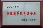 2007年度安徽省节能先进企业