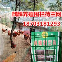 供应散养鸡围栏@养鸡网子@养殖场围网