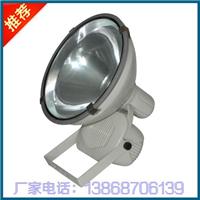 供应ZT6900防水防尘防震投光灯