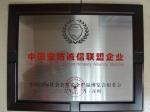 中国安防诚信联盟企业