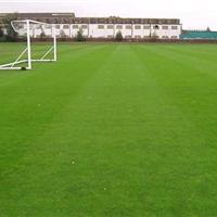 多功能足球场人造草坪,人工草坪足球场