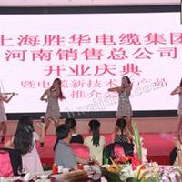 上海胜华电缆(集团)郑州分公司